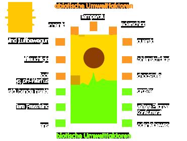 PNG Einige Umweltfaktoren einer Pflanze