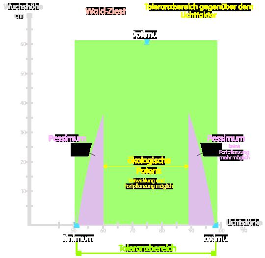 PNG Einige Grafische Darstellung Toleranzbereich